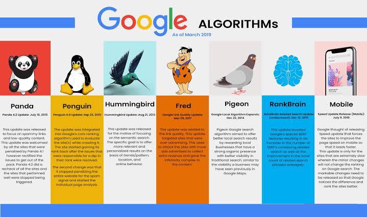 Google Algorithm impacts on your site